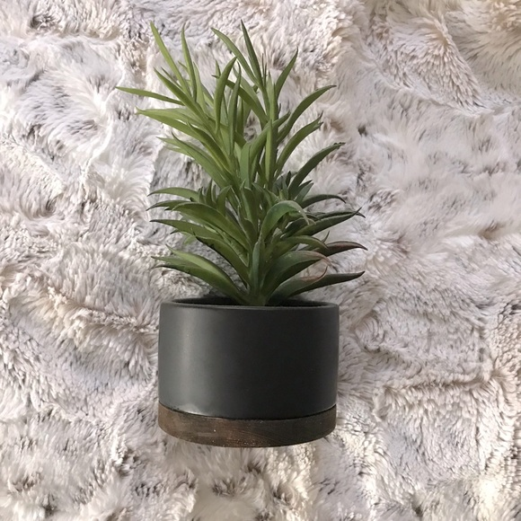 Threshold Faux Plant